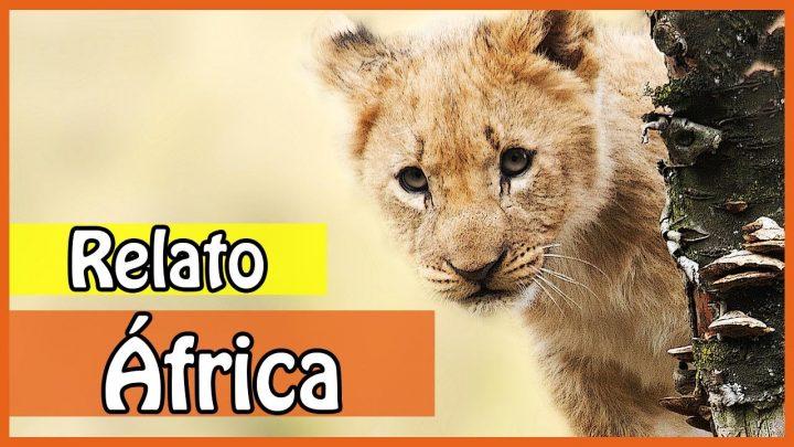 ÁFRICA: Relato de Viagem pela África – Mulher viajando sozinha… | Rachel Travel Tips