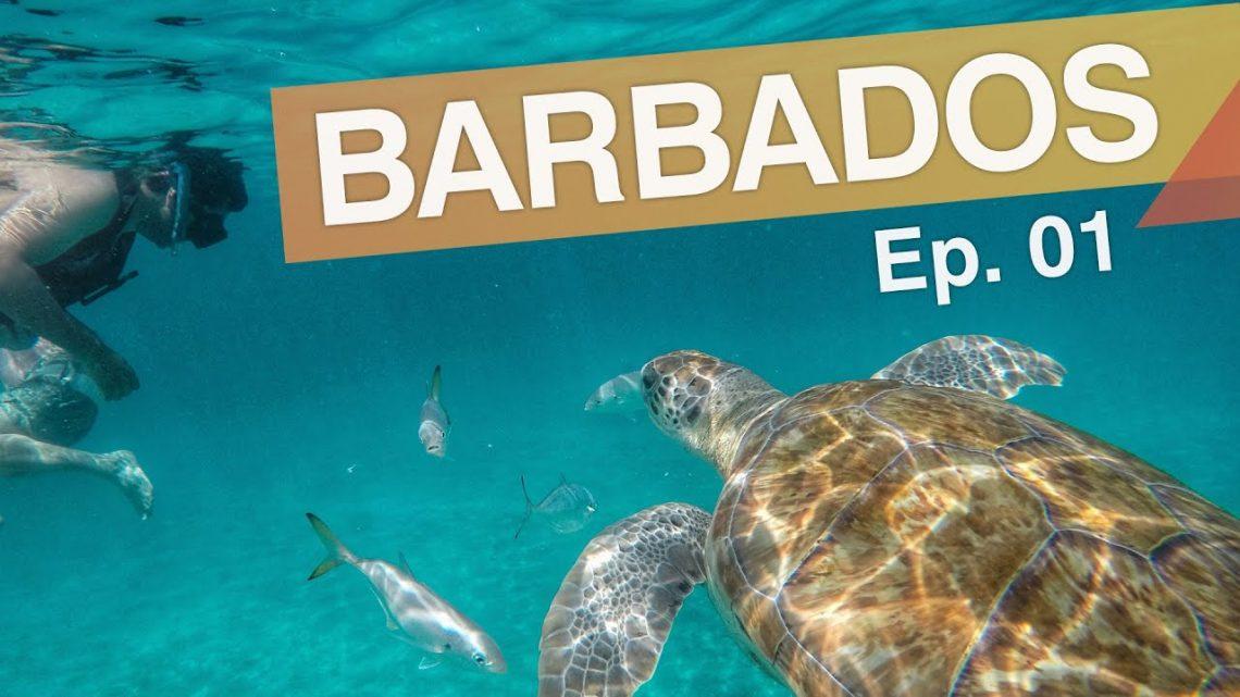 Bridgetown – Barbados :: Ep.01 :: 3 passeios imperdíveis em Barbados :: 3em3