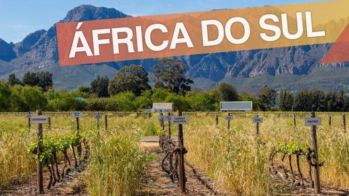 Cape Town – África do Sul :: Como é fazer a Rota dos Vinhos :: 3em3