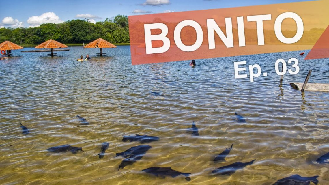 Bonito – Brasil :: Ep. 03 :: Parque das Cachoeiras, Praia da Figueira e Projeto Jiboia :: 3em3