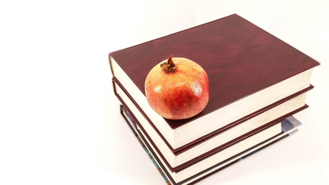 Faculdades para concurso público: quais são as melhores opções
